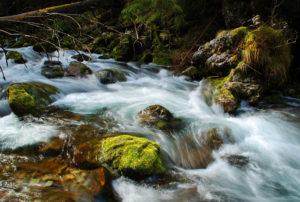 Fresh water flowing.